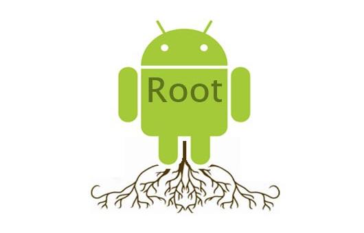 Pengertian Root Serta Kelebihannya 5