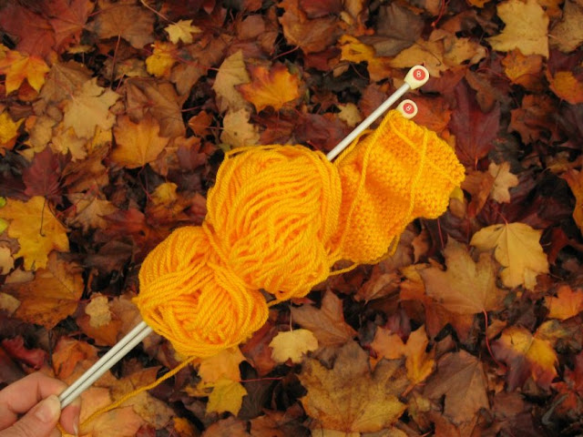 http://bugsandfishes.blogspot.co.uk/2015/11/crafting365-days-49-55-autumn-colour.html