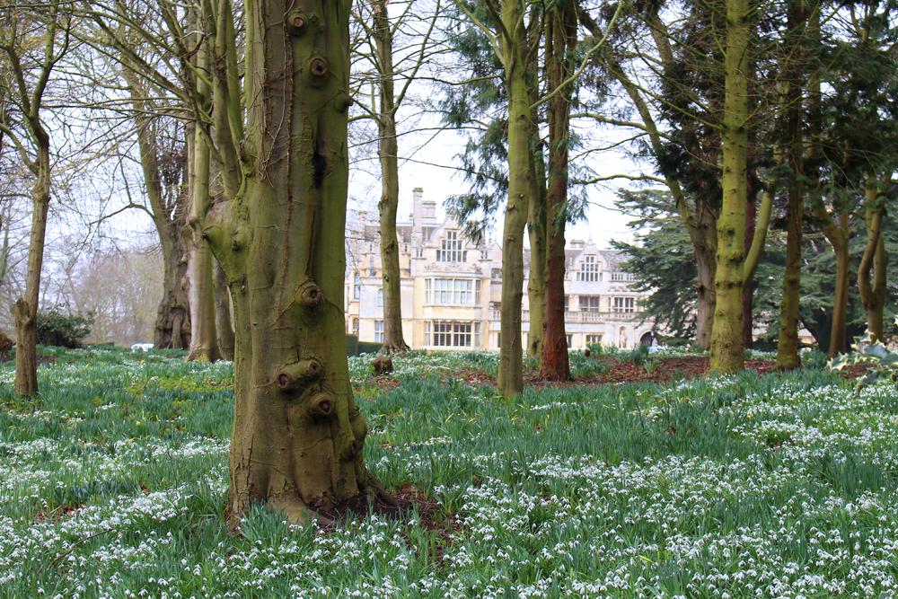 Rushton Hall gardens, Northamptonshire - UK luxury travel blog