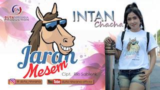 Intan Chacha - Jaran Mesem