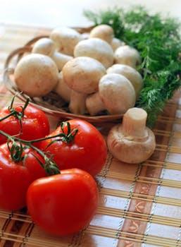 Mushroom Farming (मशरूम की खेती)