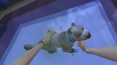 Sims 4 wash dog in first person