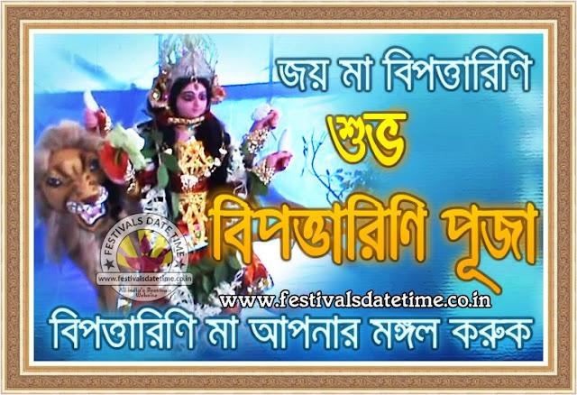 Bipodtarini Pooja Bengali Wallpaper, Bipattarini Puja Bengali Wallpaper