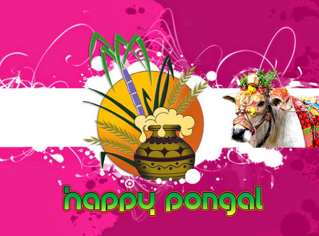 advance happy pongal images of 2016