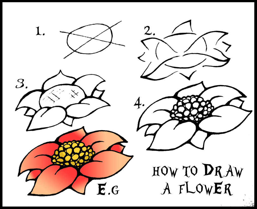 Pictures Of Flowers To Draw Step By Step
