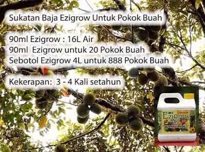 4 Liter Baja Ezigrow untuk 888 Pokok Buah