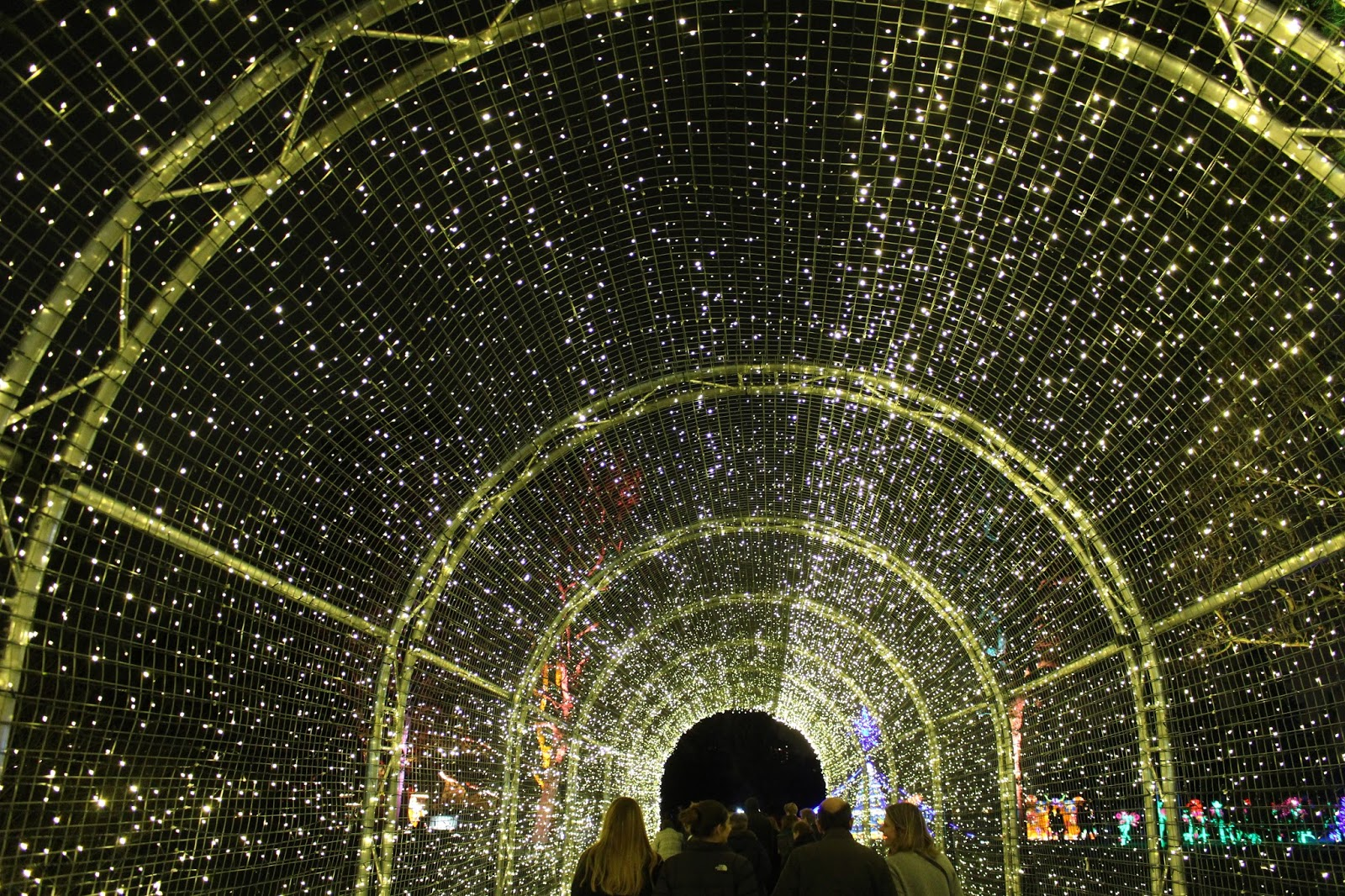 christmas at kew 2015 light tunnel