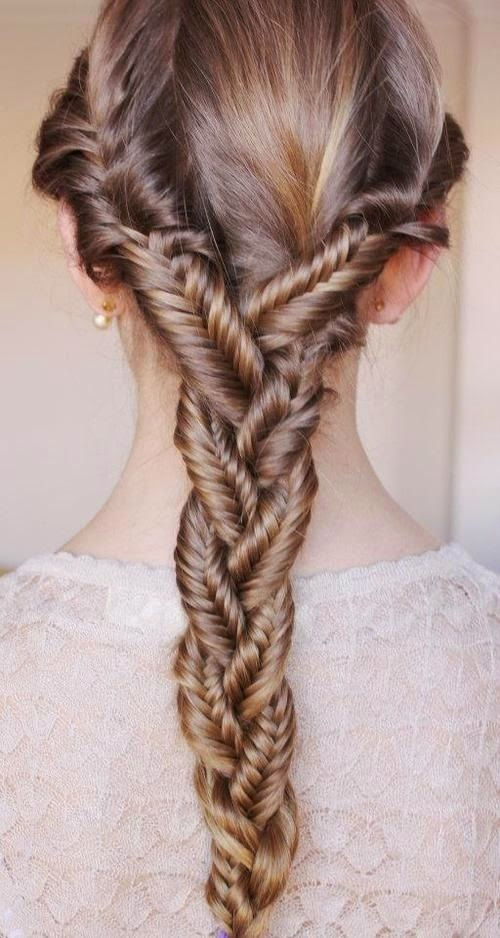 Braided Fishbone Braid