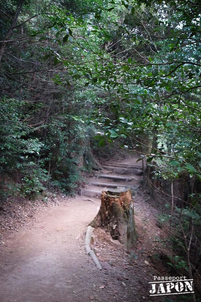 Sentier de randonnée sur le mont Misen, Miyajima, Hiroshima-ken