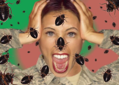 Get Rid of Bed Bugs in Hindi