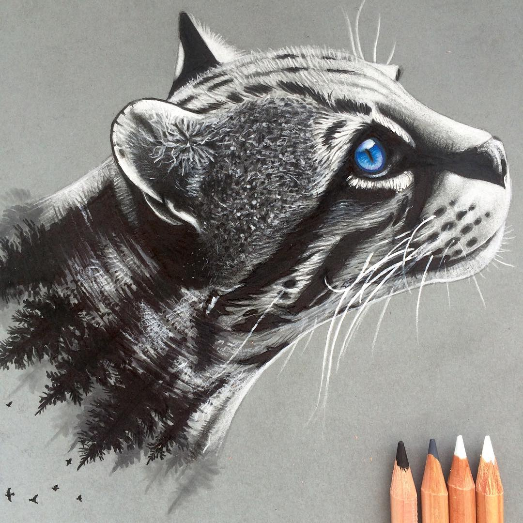 02 ocelot simon balzat colored pencils make beautiful