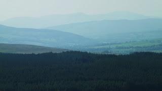A skót hegyek és fenyőerdő