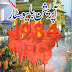Operation Blue Star by Tariq Ismail Sagar pdf download