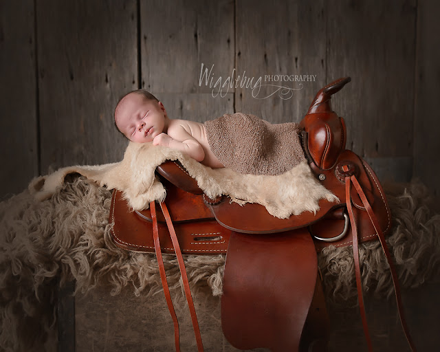 Newborn Baby Boy in the DeKalb IL photography studio of Wigglebug Photography