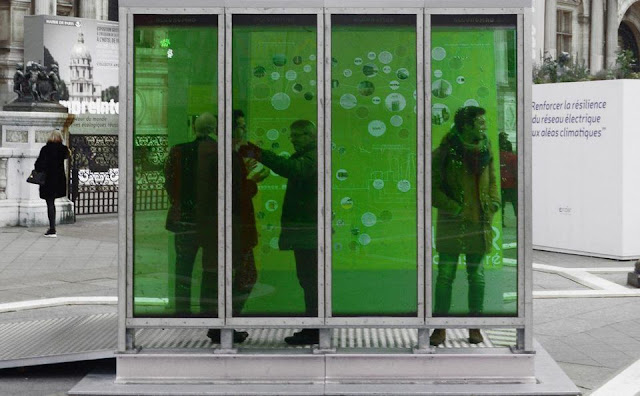 Microalgae glass panels