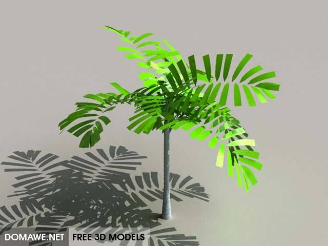DOMAWE net: Tree 3D Model Free Download - 26