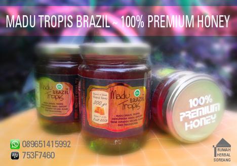 Kualitas Madu Tropis Brazil