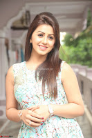 Nikki Galrani at Prema leela pelli gola trailer Launch ~  Exclusive 068.JPG