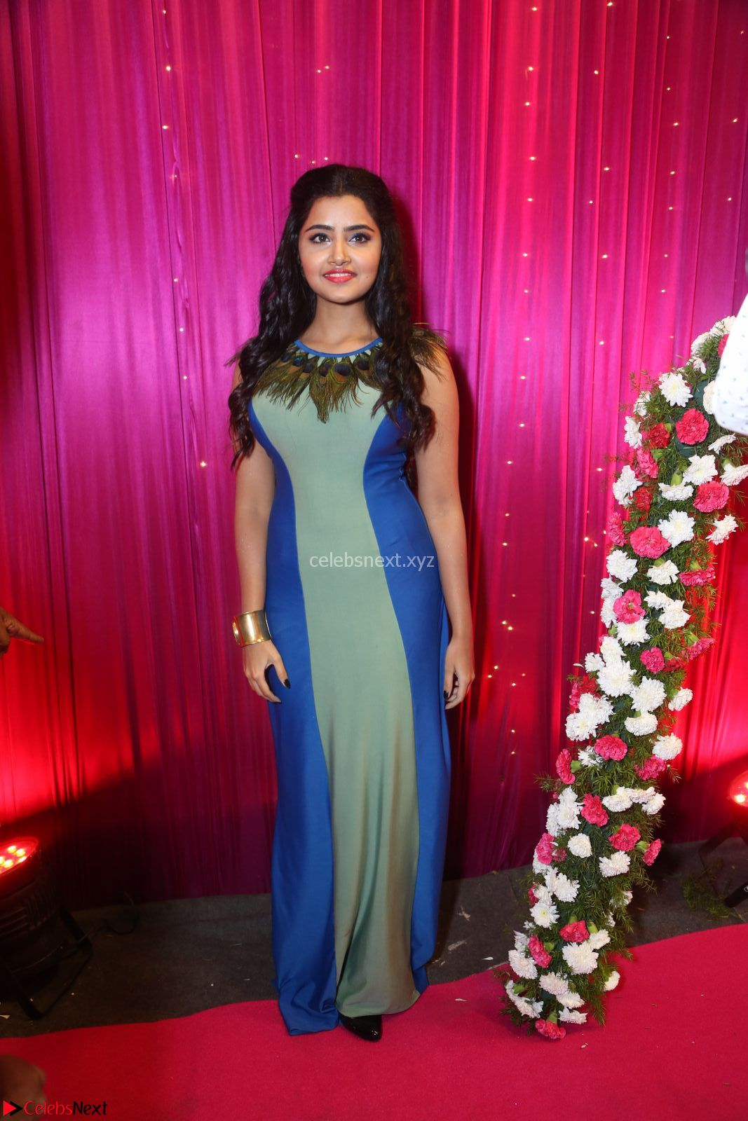 Anupama Parameswaran in a cute Peacock feather gown ~ CelebsNext Exclusive