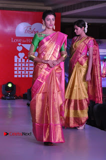 South Indian Celebrities Pos at Love For Handloom Collection Fashion Show  0025.jpg
