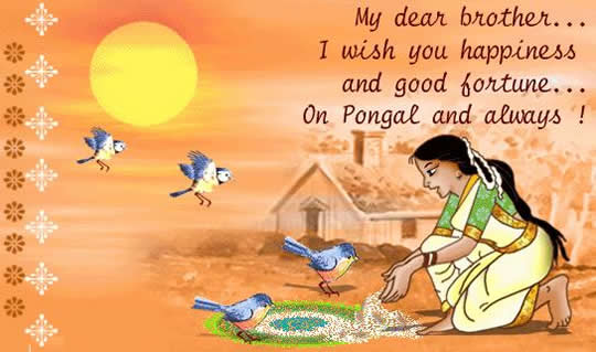 sms message quotes image hd pongal sms message  wishes greetings card image whatsapp status lines text pics gf bf girlfriend boyfriend lover r tic sweet msg quotes sandesh information essay
