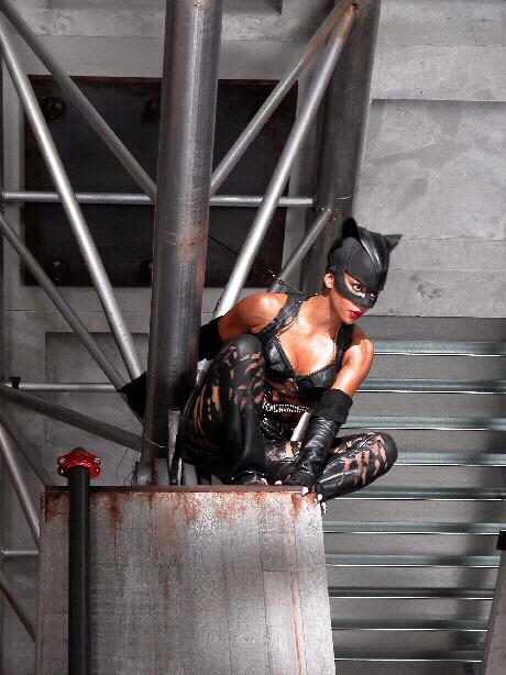 Catwoman 2004 Full Movie Watch In Hd Online For Free - 1 -7128