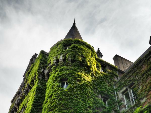 château des princes de ligne