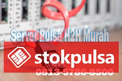 Server Pulsa H2H Murah