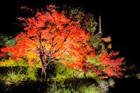 『グダグダの京都まとめブログ。』