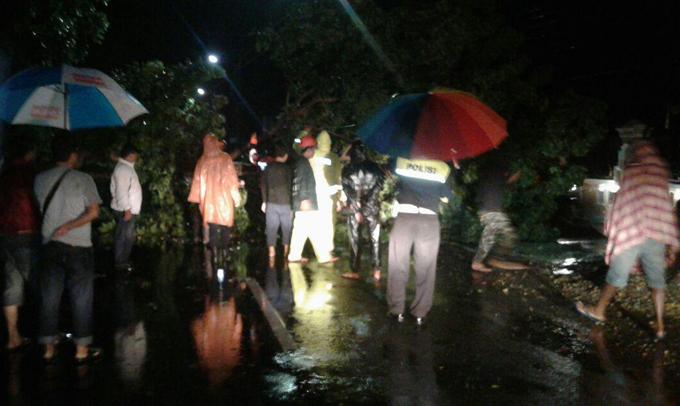 Evakuasi Pohon Tumbang, BPBD Bone Kerahkan Puluhan Petugas