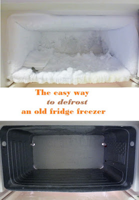 http://poorandglutenfree.blogspot.ca/2016/01/the-easiest-way-to-defrost-fridge.html