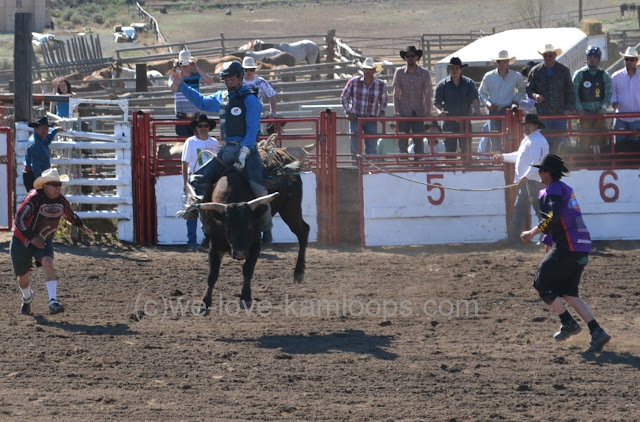 Bullfighters are always there to protect the rider