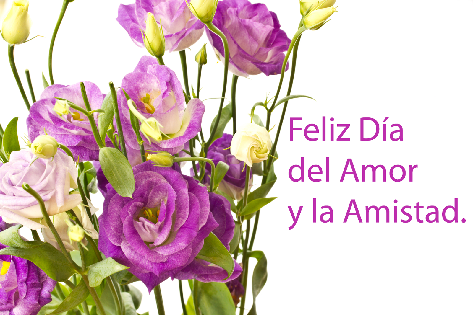 Para Del Dia Y Amor De 14 Febrero El Amistad De En Arreglos La Madera Caja 14 De Febrero