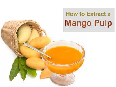 Extract Mango Pulp