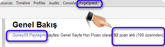 Dinamik Blog Pagespeed