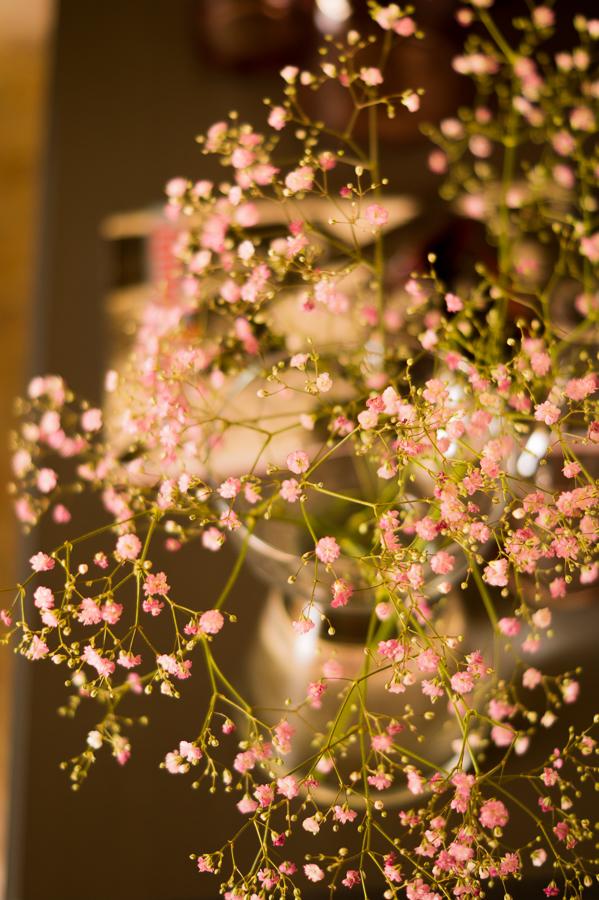 Blog + Fotografie by it's me   fim.works   Flower Friday   Rosa Schleierkraut