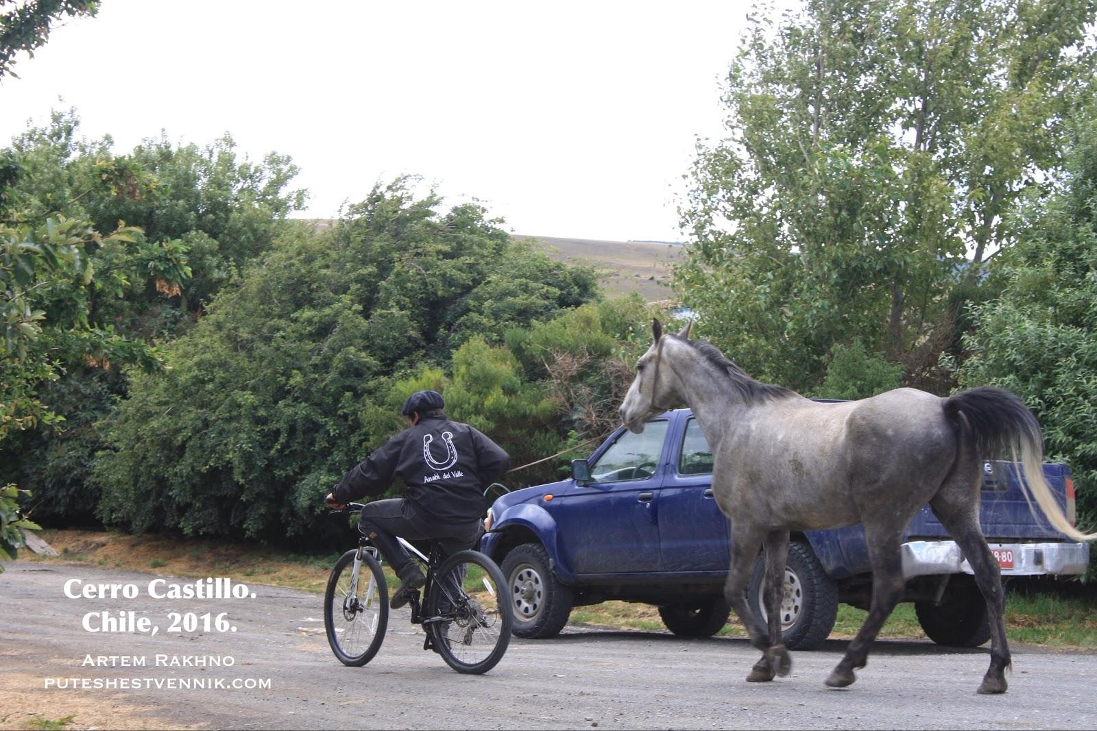 Чилиец на велосипеде ведет за собой лошадь
