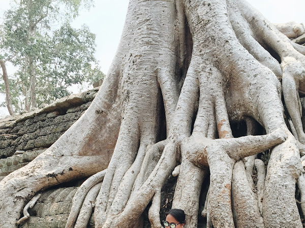 [Travel] Cambodia Day 2- Ta Phrom Temple