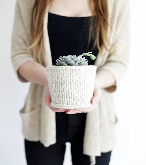 wool; pot cover; plant; decoration; diy