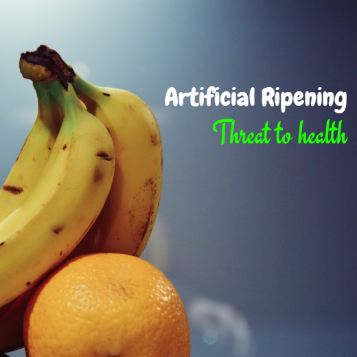Artificial ripening is a threat to health?