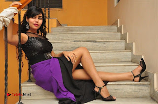 Telugu Actress Rachana Smith Stills at Money is Honey Audio Release  0120.jpg
