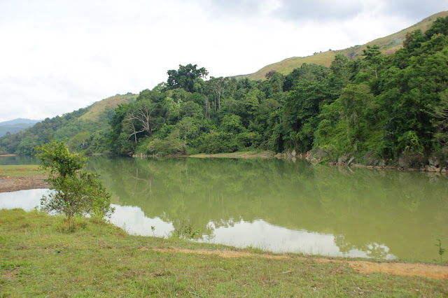 Wonderful Indonesia! Kenalkan Primadona Suaka Marga Satwa Barumun di Padang Lawas, Danau Tasik