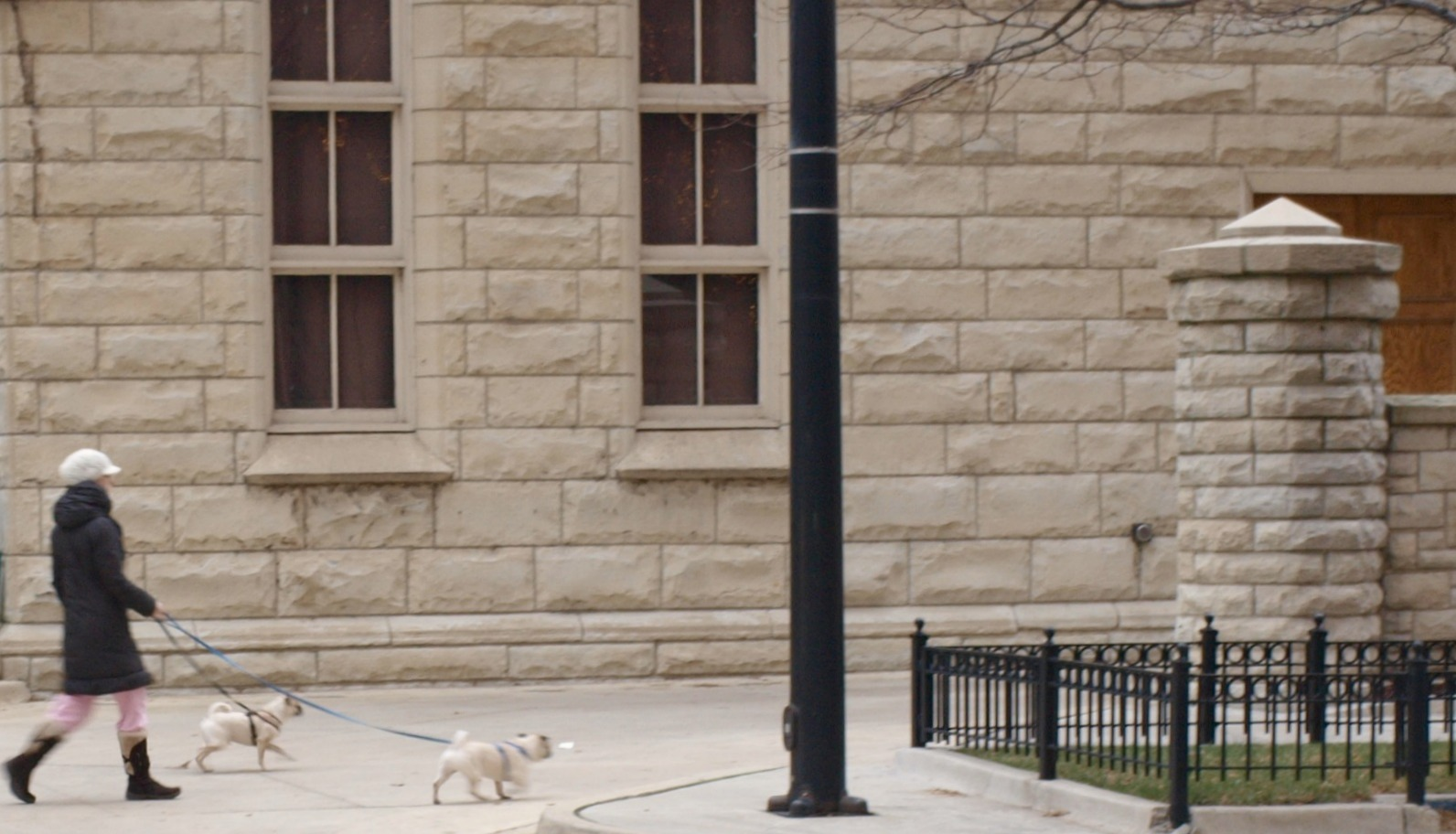limestone building Chicago woman walking pugs by Hello Lovely Studio