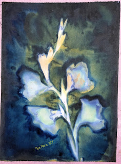 Wet cyanotype_Sue Reno_Image 93