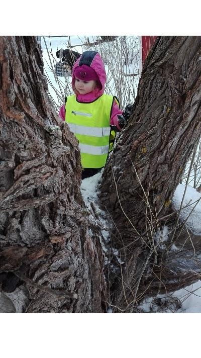 lapsi puu talvi