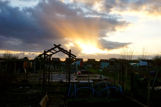 sunset at plot 24a - Carrie Gault 2018