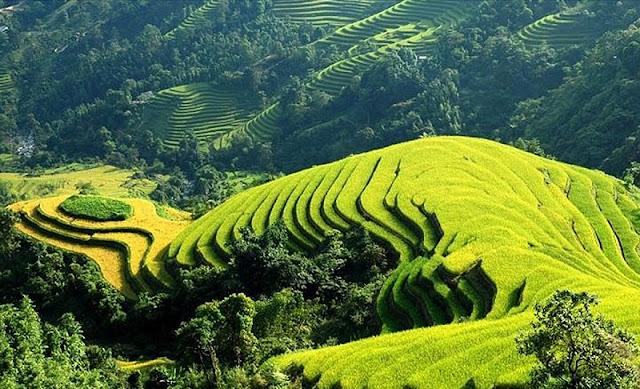 Ha Giang - The highest areas of Viet Nam 2