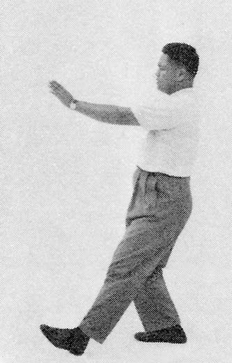 Tai Chi Chuan (Square Form) 46. Step Forward And Punch Down