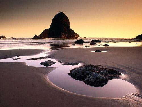 صورة شاطئ بحر موحل
