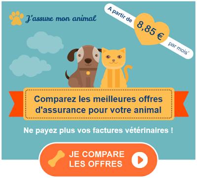 http://assurance.yalata.fr/2015/02/une-assurance-sante-pour-votre-chien-ou.html